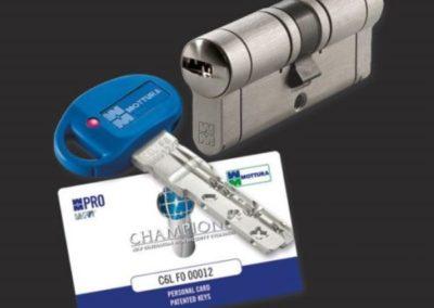 Champion Pro 1-540x513